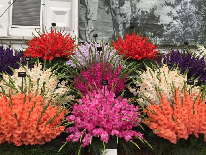 A day out with the flowers: Chelsea Flower Show2016